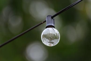 GardenLightbulb